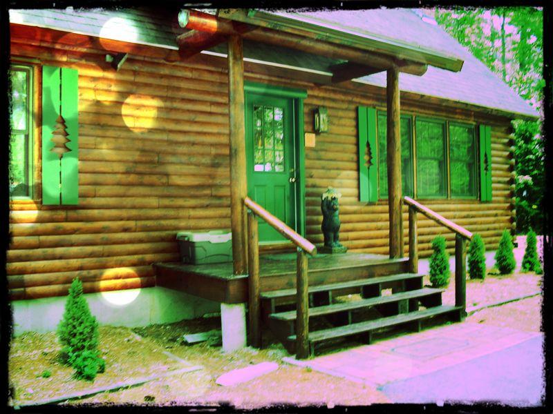 Log cabin vintage
